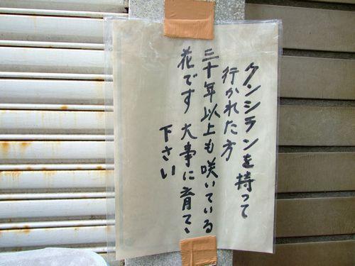 2009_07120532.jpg