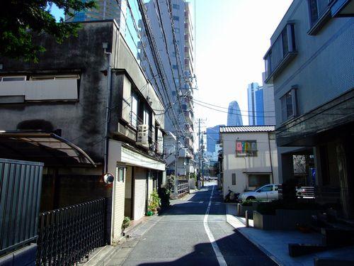 2010_01160095.jpg