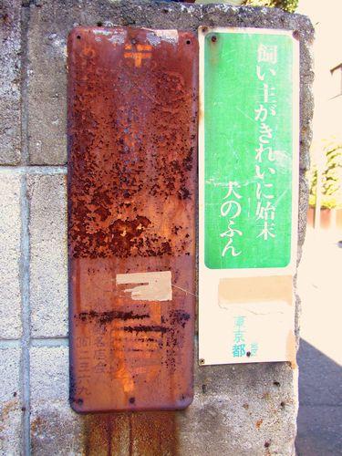 2010_01160154.jpg