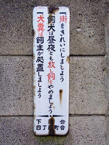 2010_01160275.jpg
