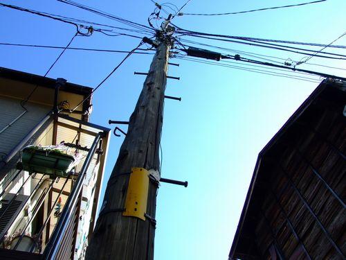2010_02050092.jpg