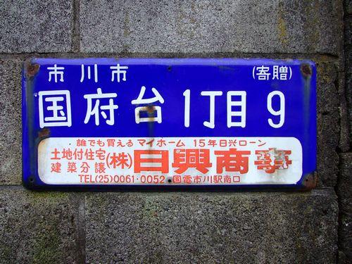 2010_11130036.jpg