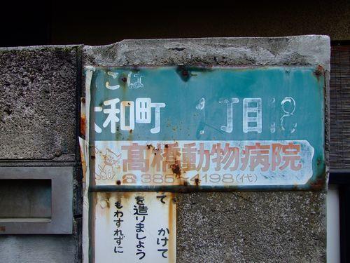 2010_11140079.jpg