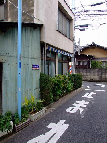 2010_11140198.jpg