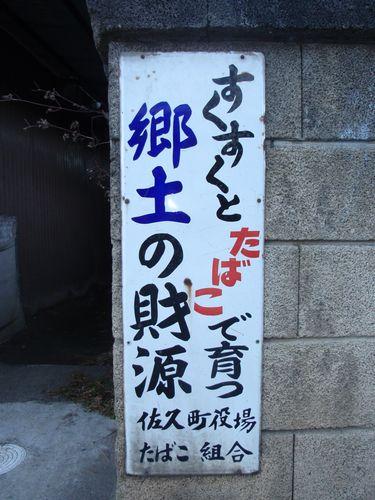 2010_12040239.jpg