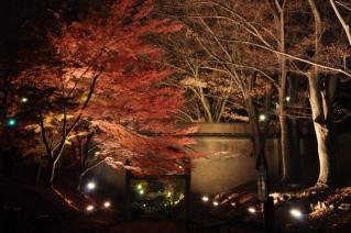 2009年11月長野遠征010