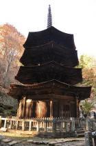 2009年11月長野遠征 2日目 009