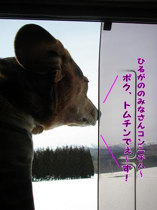 10-03-31-3.jpg