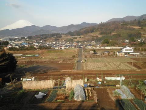 初春の田原盆地26