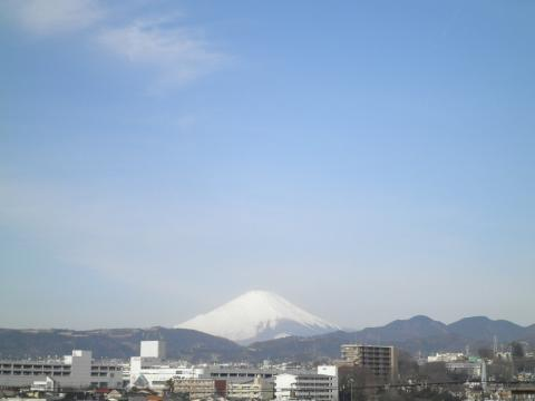 初春の白富士47