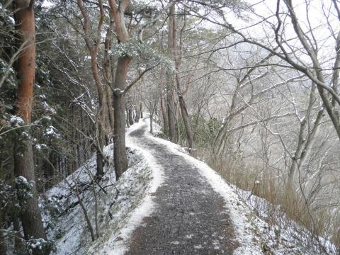 雪の尾根道101