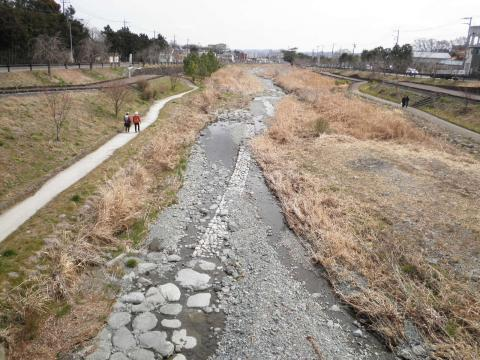 初春の水無川209