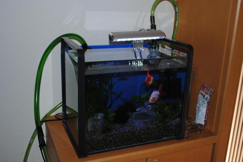 New水槽2