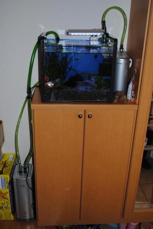 New水槽3