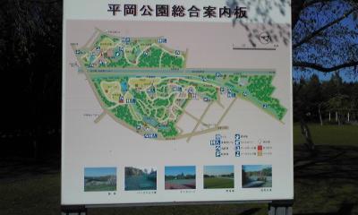 平岡公園①