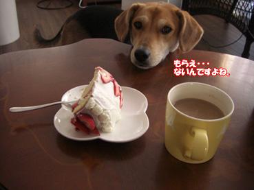 また食べてる!