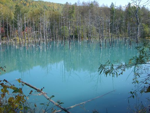emerald blue pond 2