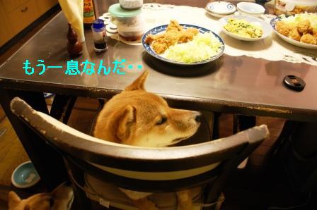 14_20100106084559.jpg