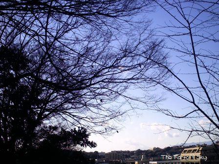 2010-01-03-02.jpg