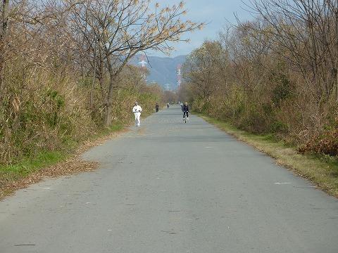 牧野辺りの淀川CL