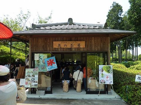 三室戸寺09