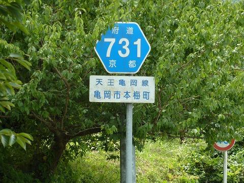 府道731号線