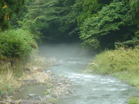 清滝川_北山杉資料館横