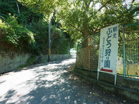 竜田越古道04_ぶどう園看板
