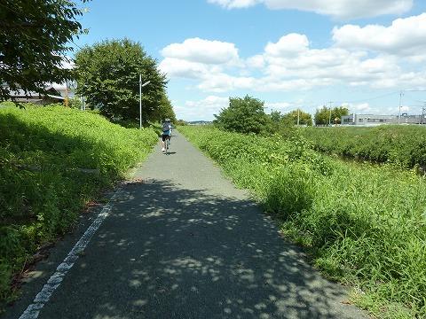奈良自転車道01_富雄川沿い