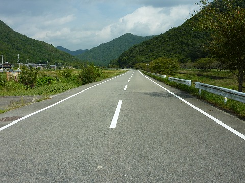 県道310号線