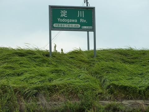 淀川CR_往路02_えらい向かい風
