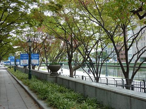 大阪市役所の南側