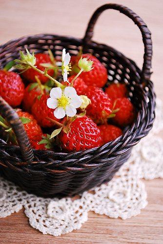 StrawberryDSC_0019.jpg