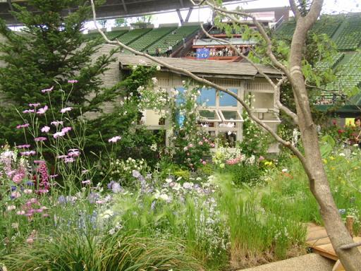 バラの小屋1