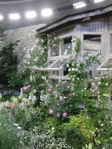 バラの小屋3