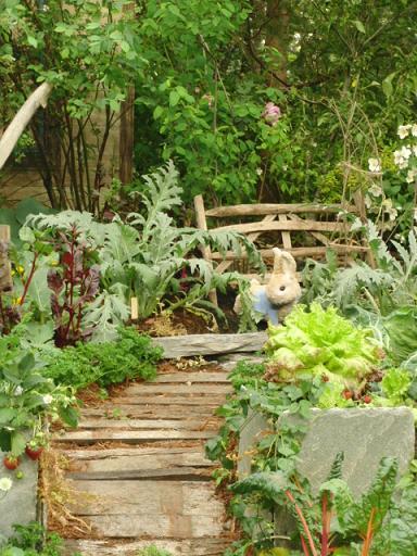 キッチンガーデンウサギ