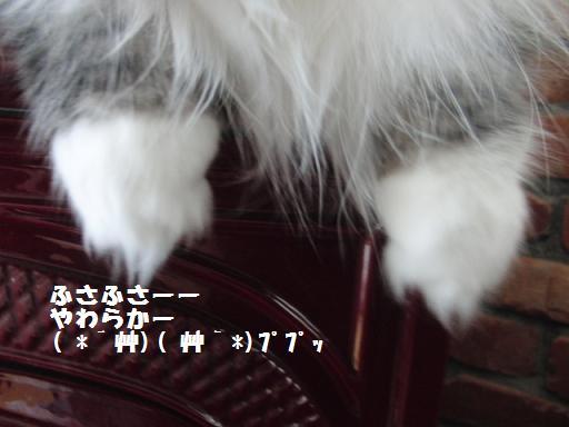 toro-can4.jpg