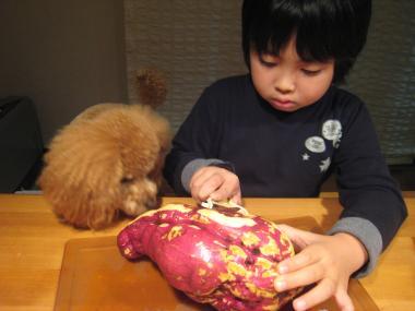 縺カ繧阪$+150_convert_20091206072736