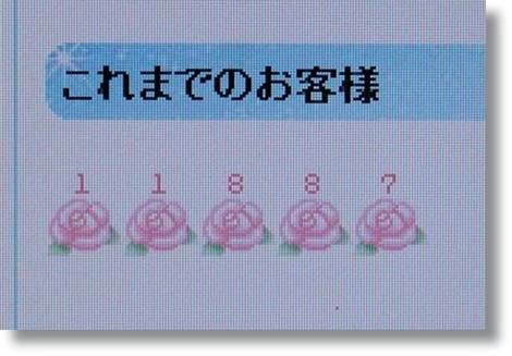 1_110203.jpg