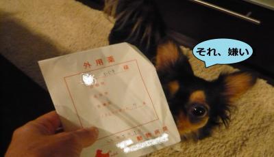 001_convert_20101006214255.jpg