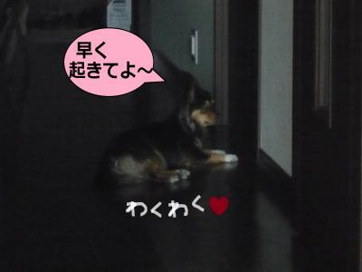 002_convert_20100717084631.jpg