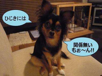 002_convert_20100823224139.jpg