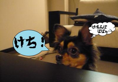 003_convert_20101214153943.jpg