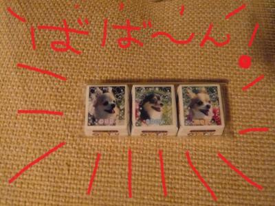 021_convert_20100105121428.jpg