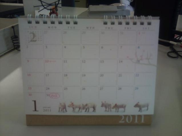 2011-01-28 12.16.07