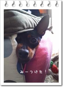 2012_0327_164232.jpg