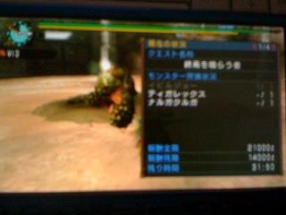 003_20110212134156.jpg