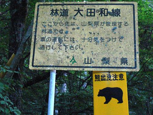 富士山麓・鳴沢村 205