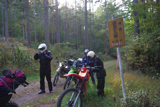 20101017八ヶ岳林道127