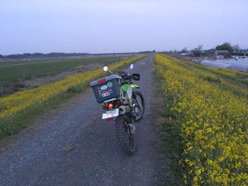 RIMG10068.jpg